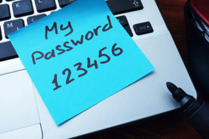 How important is it to have secure passwords